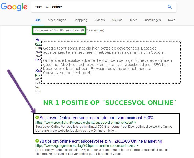 succesvol online met topranking in Google